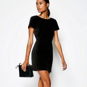 Jack Wills Black Campton Velvet Shift Dress